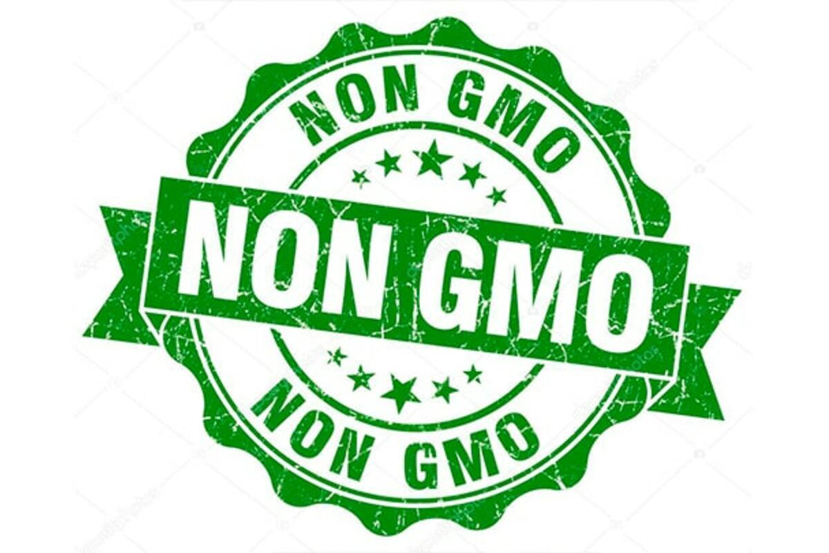 «Вред» или «польза» генетически модифицированных организмов