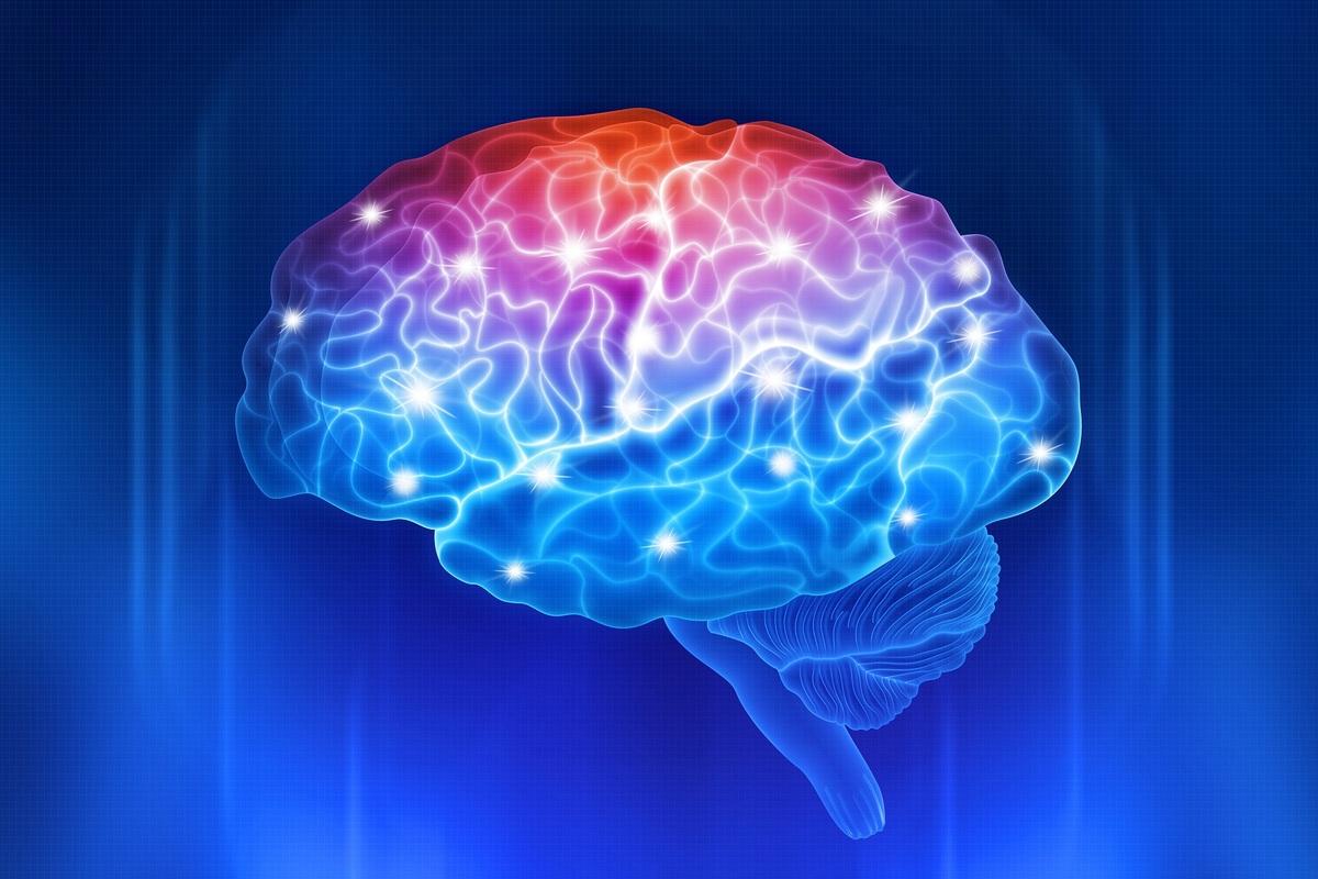 Вплив води на роботу мозку